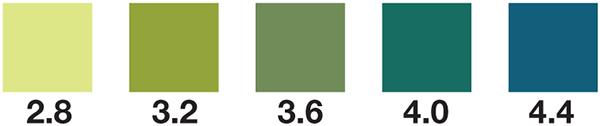 wine pH test strips, wine pH, pH test strips, pH 2.8-4.4, pH 2.8-4.4 test strips